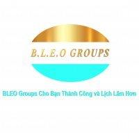 bleoeducedgmailcom-logo-bleogroups